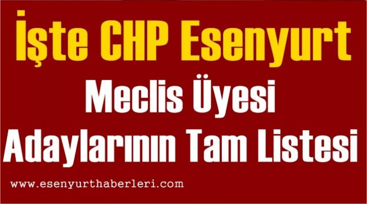 İşte CHP Esenyurt Meclis Üyesi Adayları
