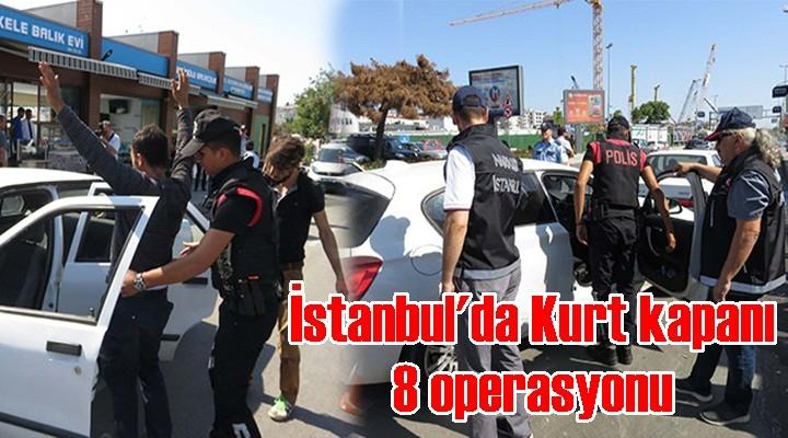 İstanbul'da Kurt kapanı 8 operasyonu