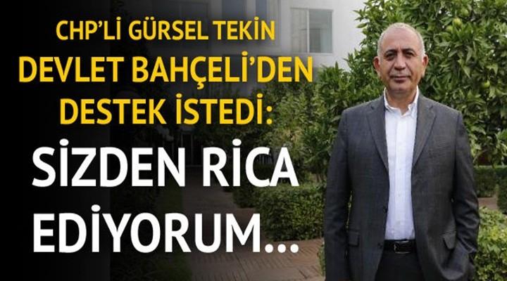 CHP'li Gürsel Tekin Devlet Bahçeli'den destek istedi: Sizden rica ediyorum...