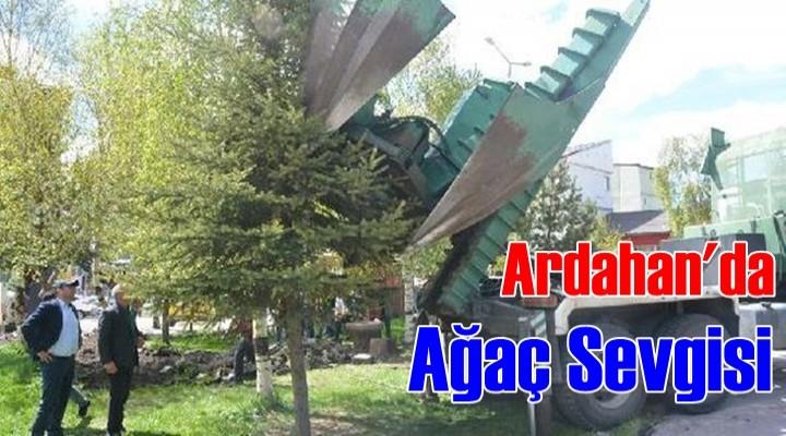 Ardahan'da Ağaç Sevgisi