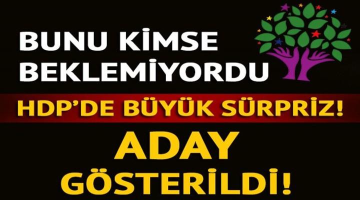 HDP'nin Kars Belediye Başkan adayı Belli oldu