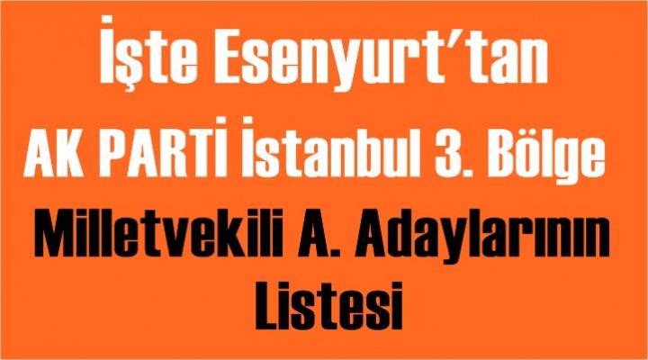 İşte Esenyurt'ta  AK Parti Milletvekili A. Adaylarının Listesi