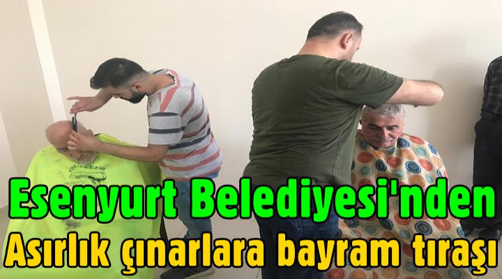 Esenyurt Belediyesi'nden Asırlık çınarlara bayram tıraşı