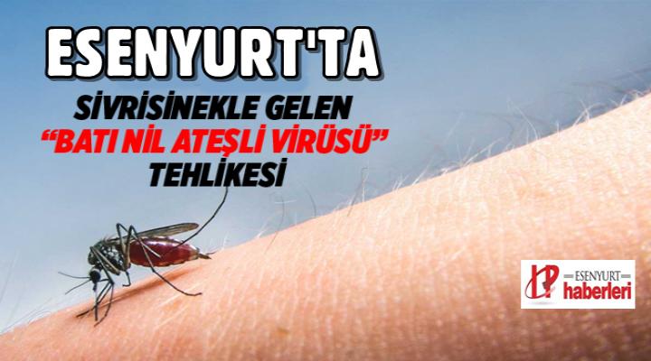 Esenyurt'ta 'Batı Nil Ateşli Virüsü' tehlikesi! Sivrisineklerden bulaşıyor