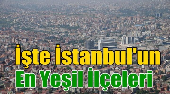 İstanbul'da en çok yeşil alana sahip olan ilçeler
