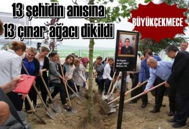 13 şehidin anısına 13 çınar ağacı dikildi