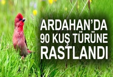 Ardahan  Tam Bir Kuş Cenneti