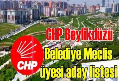 CHP Beylikdüzü Belediye Meclis üyesi aday listesi