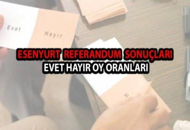 Esenyurt seçim sonuçları Esenyurt evet hayır referandum oy oranları