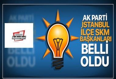 AK Parti İstanbul İlçe SKM Başkanları belli oldu