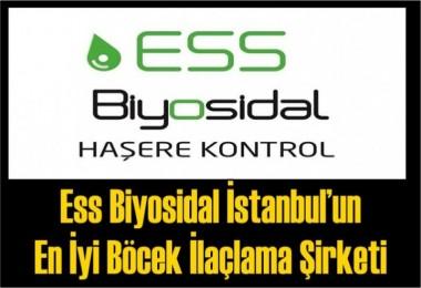 Ess Biyosidal İstanbul'un En İyi Böcek İlaçlama Şirketi