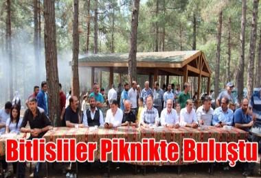 Bitlisliler Piknikte Buluştu