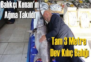 Dev Kılıç Balığı Balıkçı Kenan'ın ağına takıldı