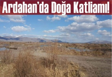 Ardahan'da Doğa Katliamı