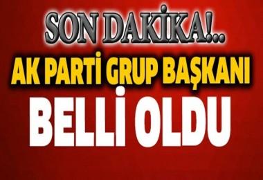AK Parti Grup Başkanı Binali Yıldırım oldu