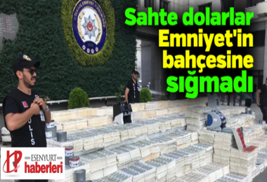 Esenyurt'ta ele geçirilen 271 milyon dolar Emniyetin bahçesine sığmadı….