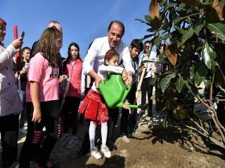 Beylikdüzü'nün Atatürk Ormanı oluyor