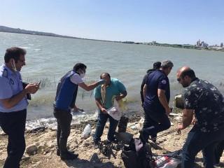 Büyükçekmece'de 1 ton kaçak avlanan balık, göle bırakıldı