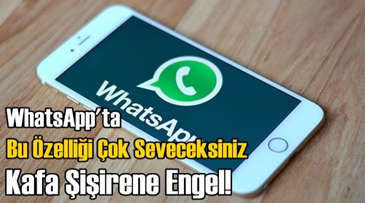 WhatsApp'ta bu özelliği çok seveceksiniz